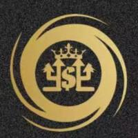 辽宁尊鼎贸易集团有限公司桂林分公司招聘:公司标志 logo