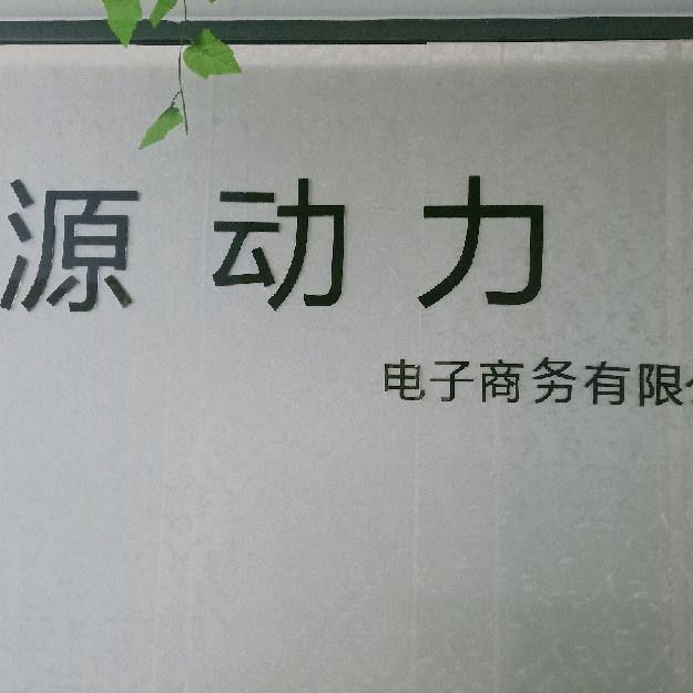 桂林源动力电子商务有限公司招聘:公司标志 logo