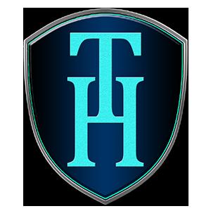天汇(深圳)信息技术有限公司招聘:公司标志 logo