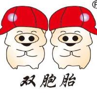 柳州雙胞胎飼料有限公司招聘:公司標志 logo