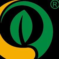 广西勤德科技股份有限公司招聘:公司标志 logo